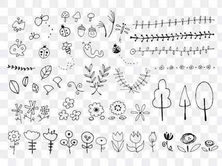 【手寫】植物和昆蟲的分類1