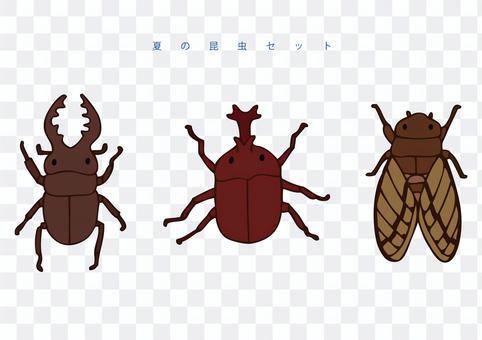 夏季昆蟲集
