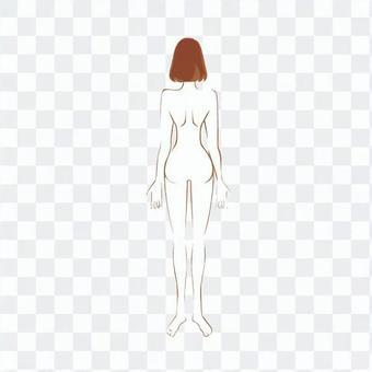 Female whole body (back)