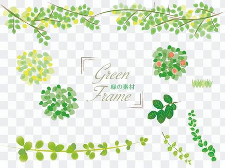 新鮮的綠色植物框架設置材料集合
