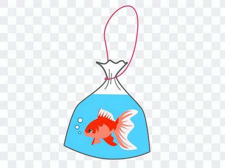金魚採取與金魚瓢