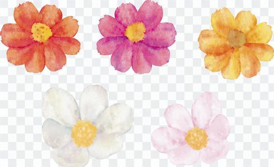 水彩繪畫花