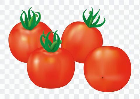 迷你西紅柿