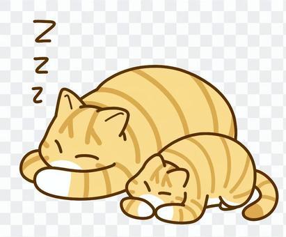 親子寝る猫