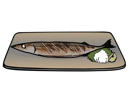 Pacific saury