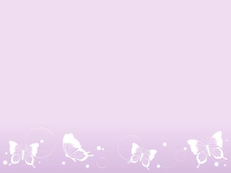 蝴蝶裝飾框架2