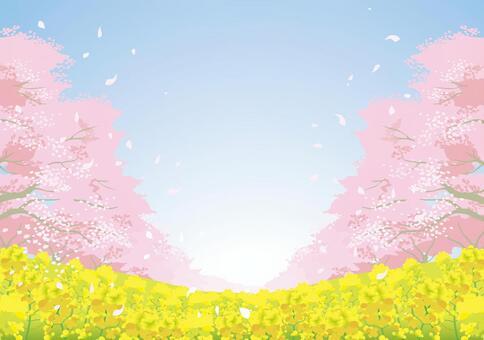 櫻花材料10