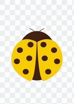 무당 벌레 (노랑)