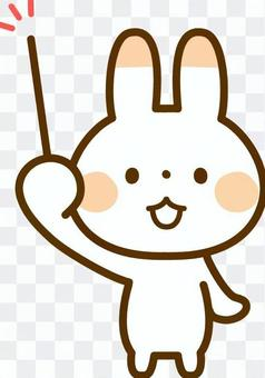 用棍子的兔子