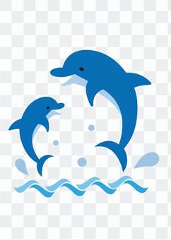 Dolphin parent and child