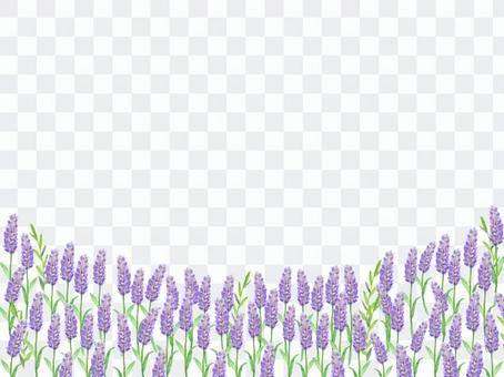 Lavender field Flower field watercolor Wind background illustration