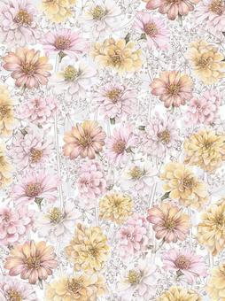 Floral frame 306 - smart case 7