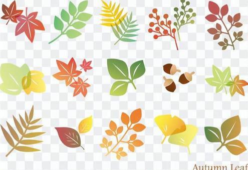 秋天的葉子集