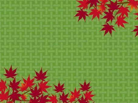 日式背景秋天楓樹狩獵楓樹