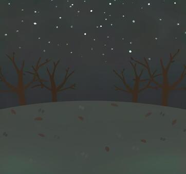 Nohara Winter Night