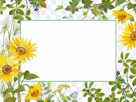夏天/向日葵例證