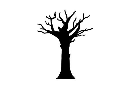 Withered tree silhouette