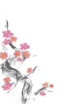 Plum blossom-no background-hagaki size