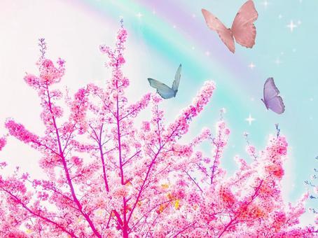 春天的蝴蝶的故事櫻花美麗