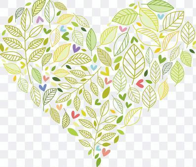 葉子12心臟