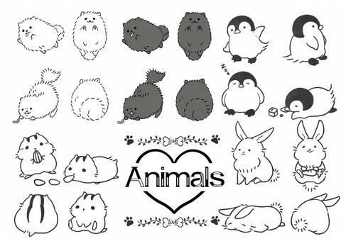鬆散的動物結論