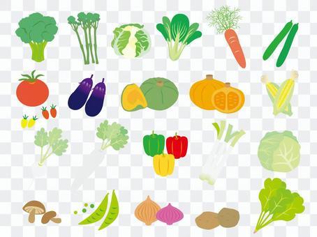 各種各樣的蔬菜集