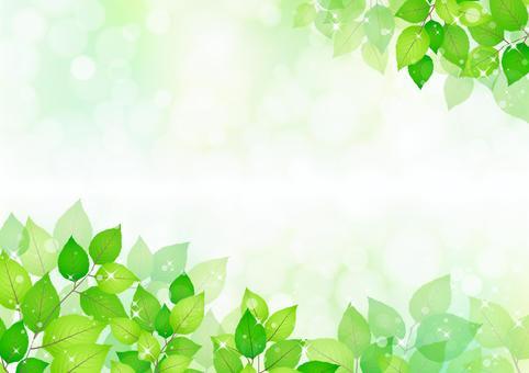 新鮮的綠色272