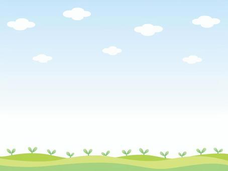 雙葉排隊的田野風景