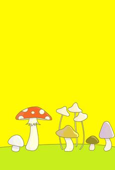 Mushrooms, mushrooms, mushrooms