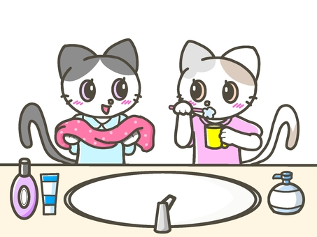 Twin cats brushing their teeth and washing their face in the morning