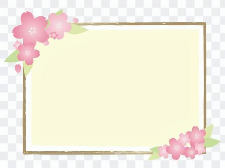 Sakuragi框架