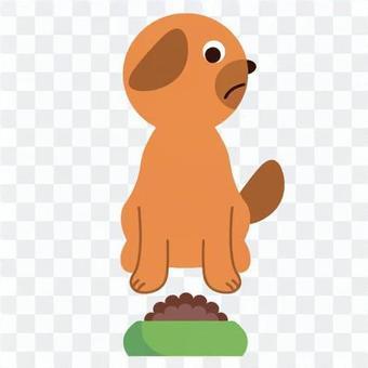 ペットフードを食べない犬のイメージ