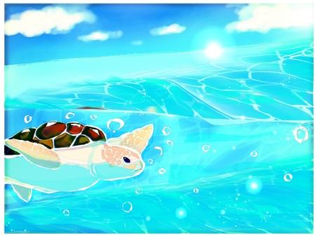 游泳海龜背景 2