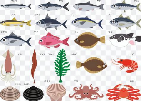 海鮮海鮮魚套裝