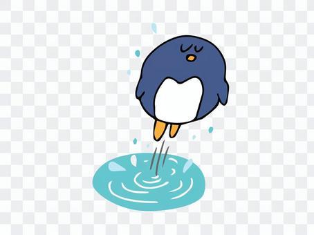水面から出てくるペンギン
