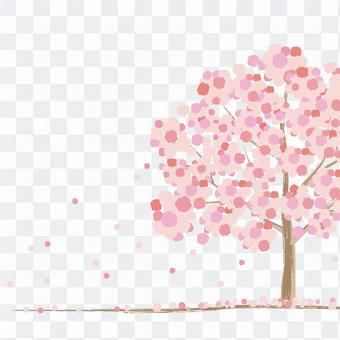 櫻桃樹的形象