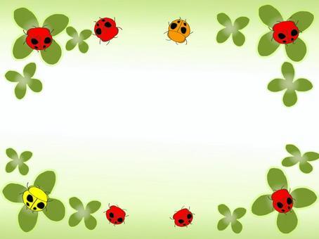 三葉草和瓢蟲