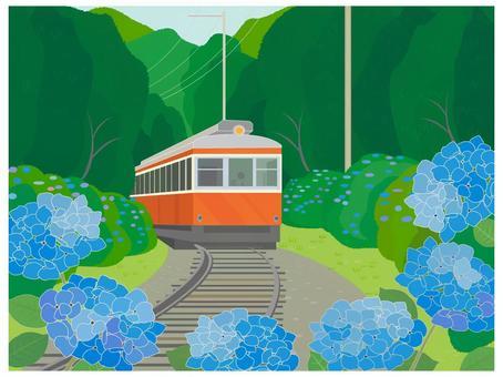 六月風光繡球花和火車