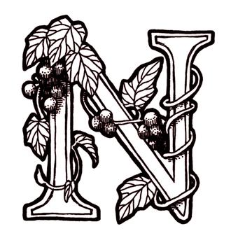 仿古筆劃裝飾最初的N葡萄