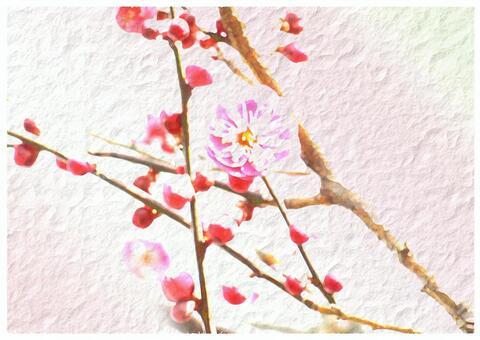 如詩如畫的梅花