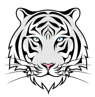 White tiger face white background