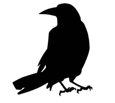 烏鴉(轉身)