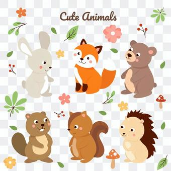 可愛的動物