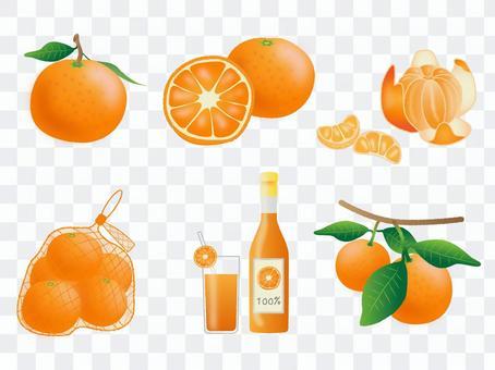冬季橘子套