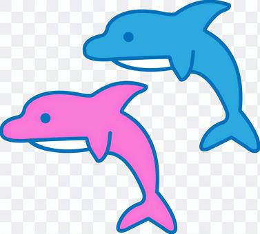 Dolphin blue pink