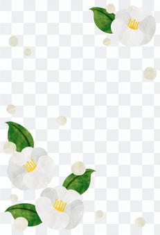 In cold sympathetic frame / white camellia