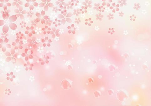 Sakura _ Pink _ Shabon _ Background