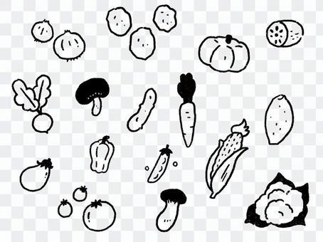 お野菜 詰め合わせ