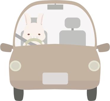 Drive_Rabbit_White