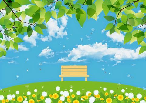 新鮮的綠色和綠色的山長凳